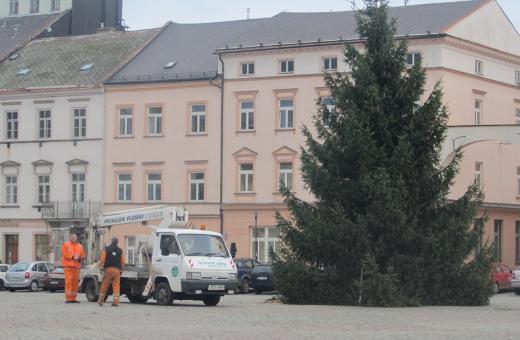 Nový strom už opět věstí Vánoce